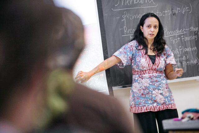 Professor Alisa Hove teaching