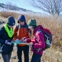 Students doing fieldwork