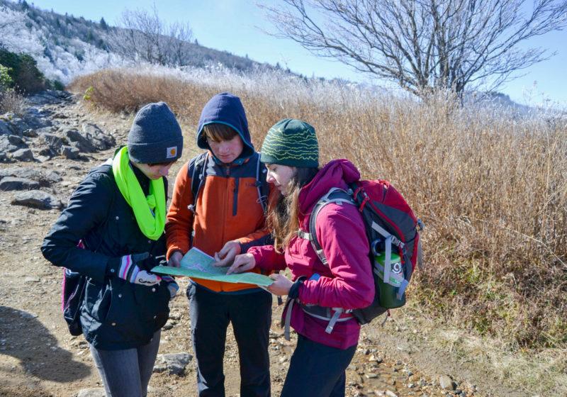 Students doing fieldwork