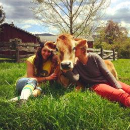 Bell Pepper - Milk Cow
