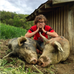 Thom with Sows